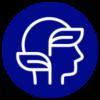 icon-smart