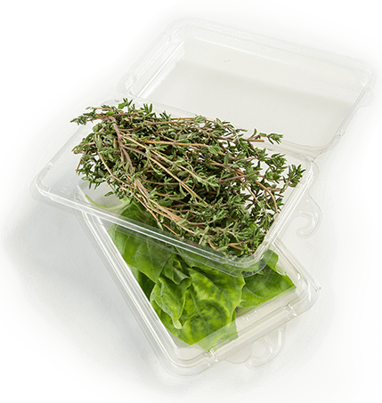 herb container