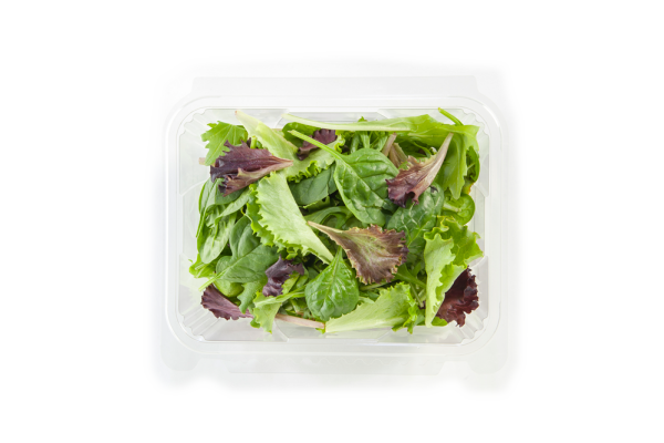 salad in plastic clamshell packaging
