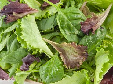 category-herb-tender-leaf